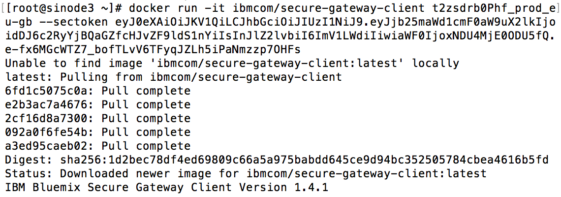 Install the Secure Gateway Client.